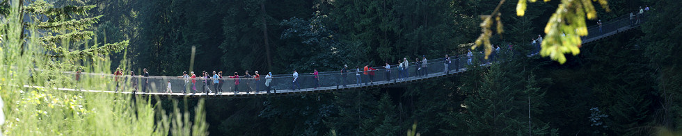 Capilano Suspension Bridge Gigapixel Photography